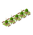 trees of a park bench vector image vector image