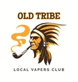 tribal american indian vipe bar logo vector image vector image