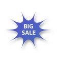 big sale banner on white background vector image vector image