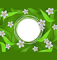 floral banner with white apple or cherry blossoms vector image vector image