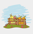 fruits harvest at nature vector image