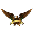 Fury spread winged eagle vector image
