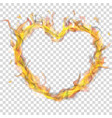 heart of fire flame with smoke vector image vector image
