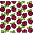 raspberry fruit seamless pattern vector image vector image