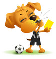 referee dog shows yellow card violation of rules vector image
