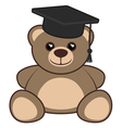 University bear vector image vector image