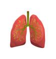 healthy lungs organ metaphor flat vector image