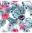 hibiscus plumeria leaves seamless white background vector image vector image