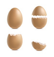 realistic 3d detailed various closeup shell eggs vector image
