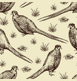 seamless pattern with pheasants vector image vector image
