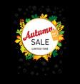 sketch autumn sale vector image vector image
