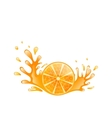 slice orange with splashing isolated on white vector image vector image