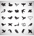 bird icons set on white background for graphic and vector image