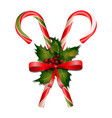 christmas candies with holly decorations vector image