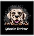 color dog head labrador retriever breed on black vector image vector image