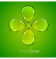 Four leaf lucky clover vector image