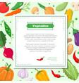 fresh vegetables - modern colorful vector image vector image