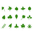green leaf silhouette vector image