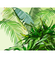 green leaves of tropical plants vector image vector image