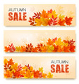 set of three autumn sale banners with colorful vector image vector image
