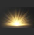 sunlight special lens flash light effect on dark vector image