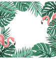 tropical border frame leaves pink flamingo birds vector image