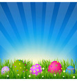 Blue Sky With Grass Easter Card vector image vector image