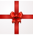 Bright red bow with tape on white vector image vector image