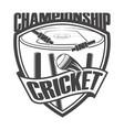 cricket championship field vector image vector image