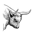 hand drawn of bull vector image vector image