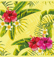 hibiscus tropic leaves plumeria pattern vector image vector image