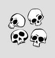 human skull in different angles vector image