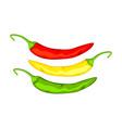 multicolor cartoon hot chilli pepper vector image