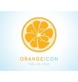 Orange stylish icon Juicy fruit logo vector image vector image