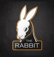 rabbit on a dark background vector image vector image