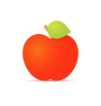 red apple with a green leaf on a white background vector image