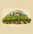 Rural landscape with villa vineyard fields and