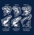 set fish emblems vintage style carp bass vector image vector image