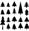 tree christmas icon vector image vector image