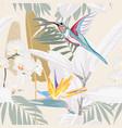 tropical plants strelitzia and colibri bird vector image