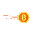 bitcoin digital encryption graphic vector image