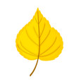 autumn yellow leaf isolated on a white backgrou vector image vector image