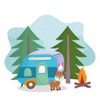 camping cute deer trailer bonfire trees forest vector image