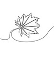 continuous line autumn maple leaf vector image vector image