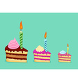 Set of different cake slices For birthday card vector image vector image