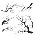set tree branches silhouette vector image