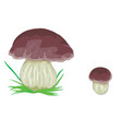white mushroom with brown cap isolated object on vector image vector image
