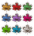 big set of multi-colored maple leaves labels for vector image