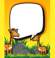 border template with giraffes in field vector image vector image
