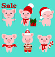 christmas pig christmas icon symbol of the new vector image
